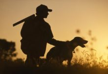 Photo of Registration for Reserved Hunts in Indiana Starts July 6