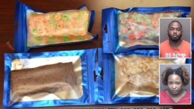 Photo of Vanderburgh Co. Sheriff's Deputies Seize 8 Lbs of Marijuana Edibles in Traffic Stop