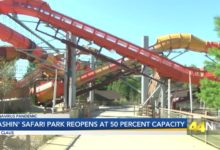 Photo of Splashin' Safari Opens at Half Capacity