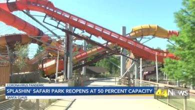 Photo of Splashin' Safari Park Opens at 50 Percent Capacity