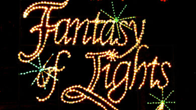Photo of Fantasy of Lights Shines