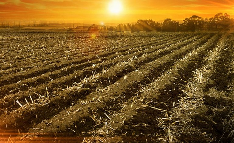 House of Representatives Pass Agriculture Improvement Act
