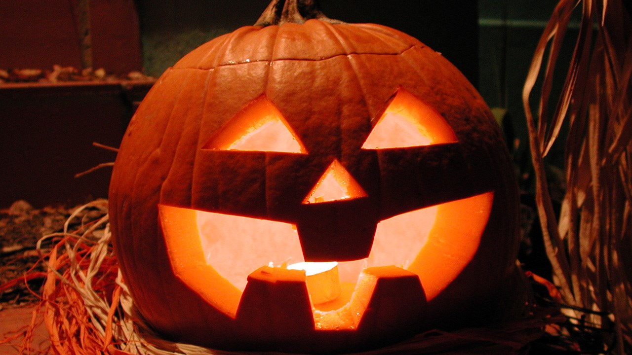 Trick-Or-Treating Changes And Safety Tips - 44News ...