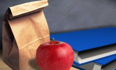 Free Summer Lunches in Henderson County
