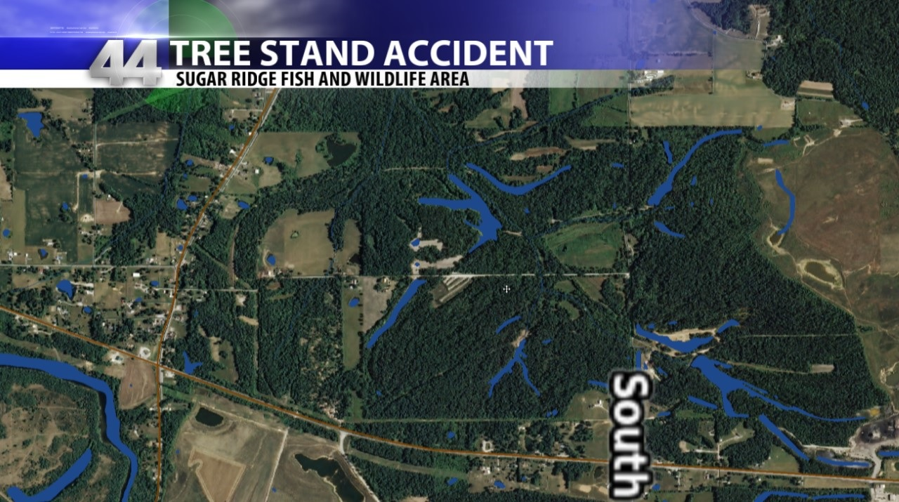 Tree Stand Accident Injures One In Pike County 44news