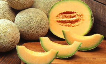 Multi-State Salmonella Outbreak in the Tri-State Linked To Pre-Cut Melons