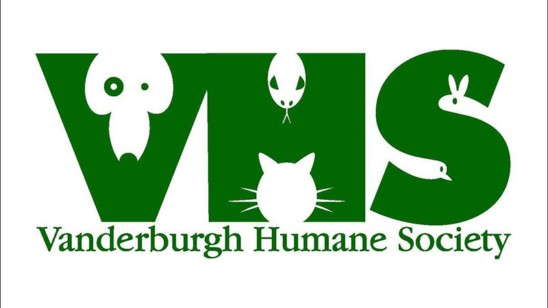Photo of VHS Offers Free Vaccines For Low Income Pet Owners