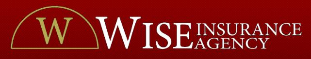 Wise Insurance logo
