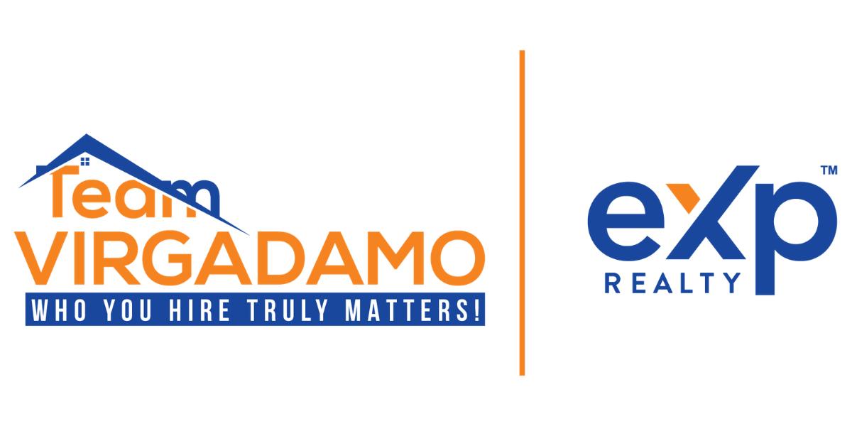 Team Virgadamo logo