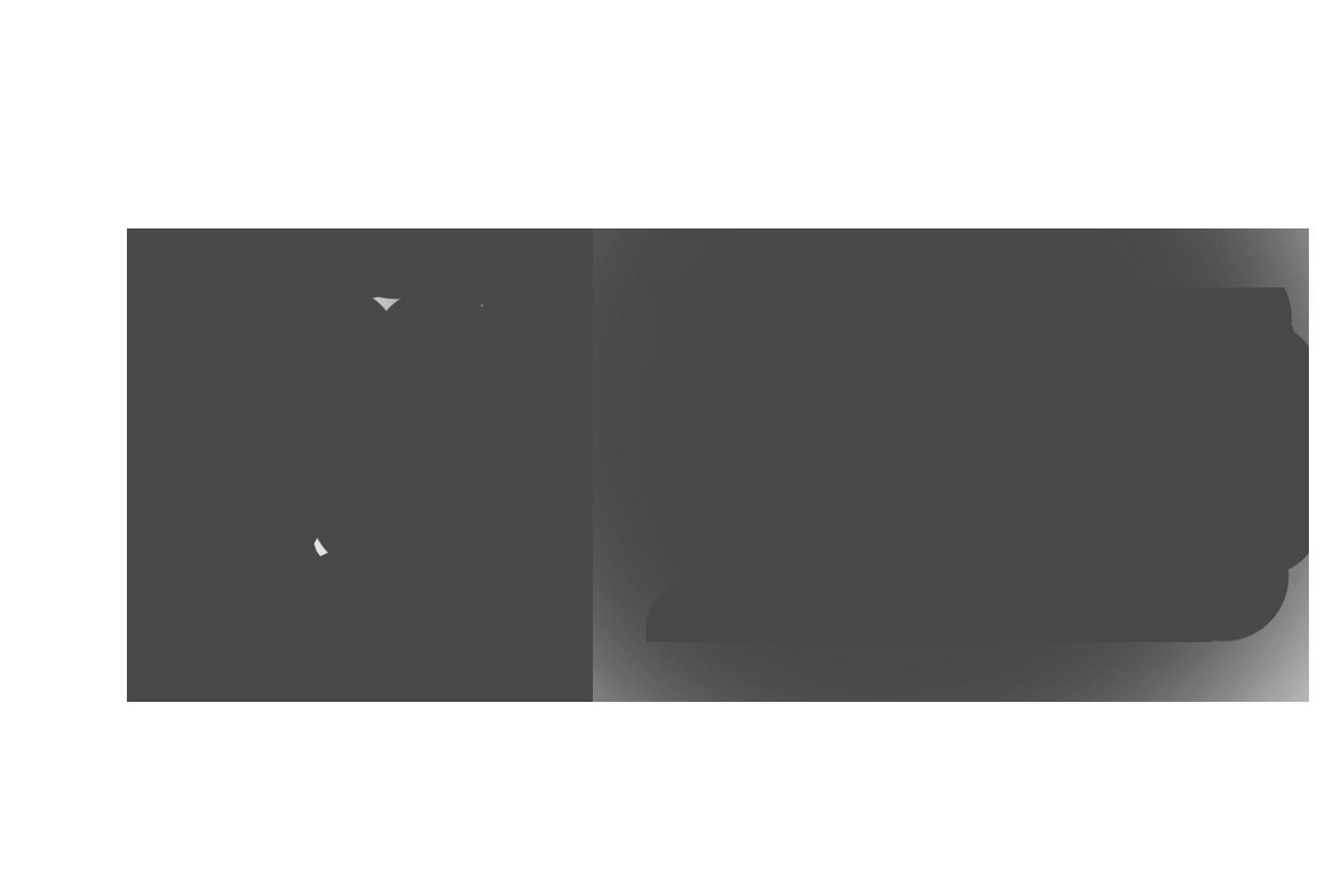 Lifestyle Home Team logo