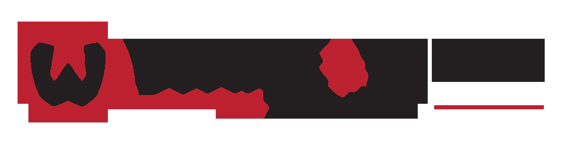 White & White Realty Team logo