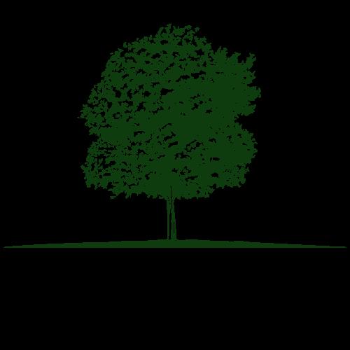 Anaqua Properties logo