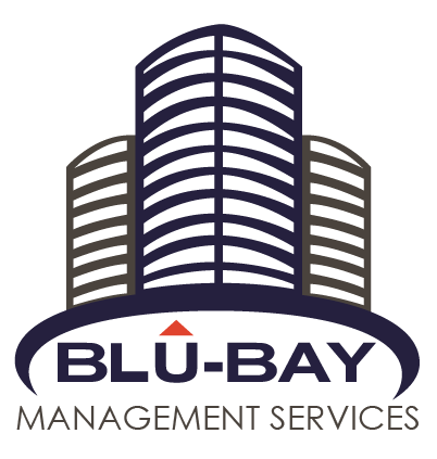 BluBay Management Services LLC logo