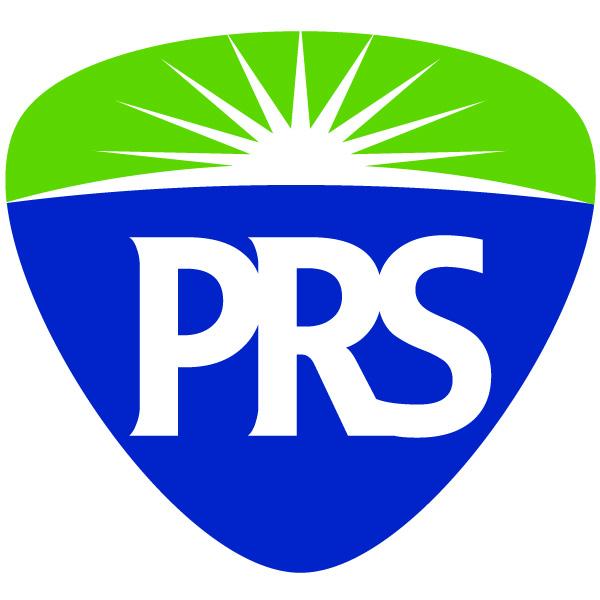 Premier Risk Solutions LLC logo