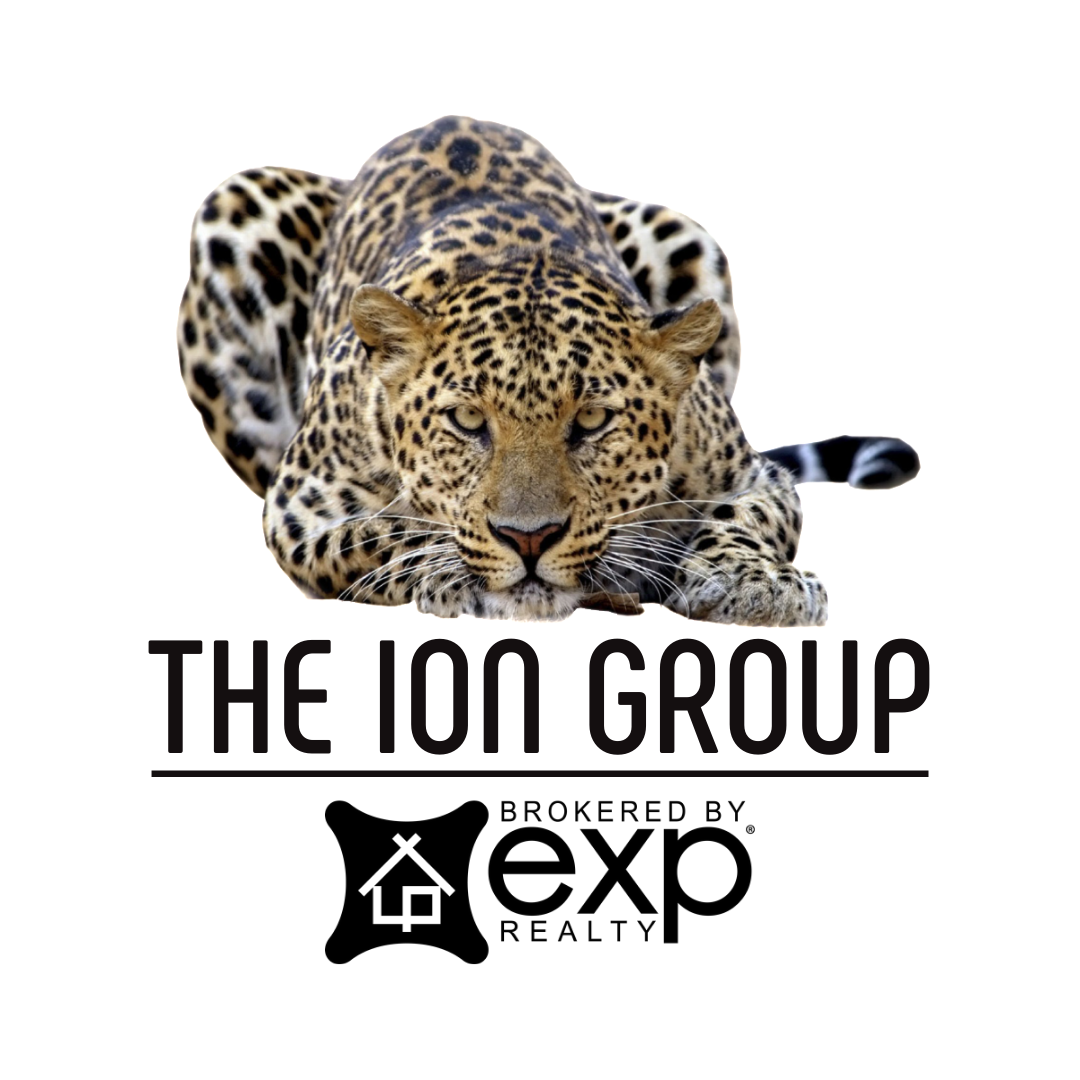 The Ion Group logo
