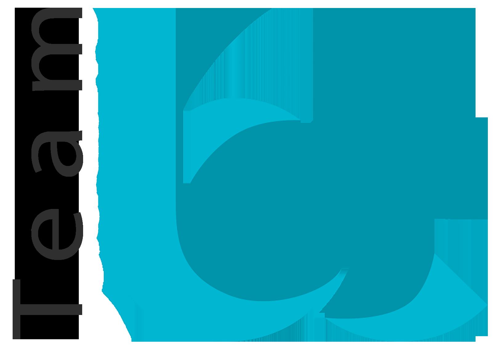 Better Choice Team logo