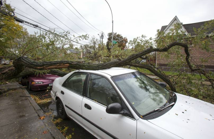 What to do if your car hits power lines