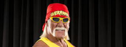 My sister hates hulk hogan. I sent this to her today. I grew it out just to piss her off.     Sibling rivalry.