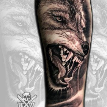 9wolfDB