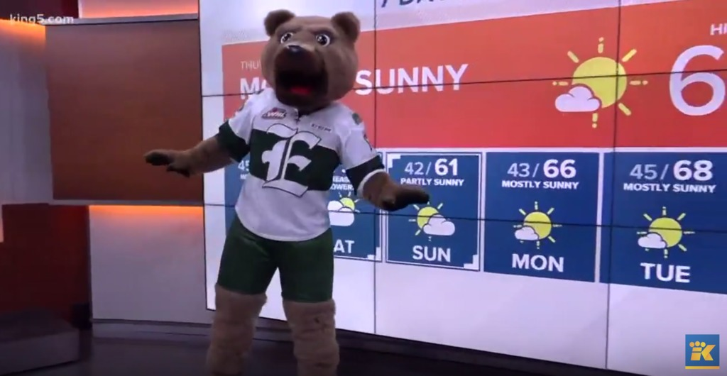ON TV: Tips and King5, With a Furry Weather Anchor – Everett