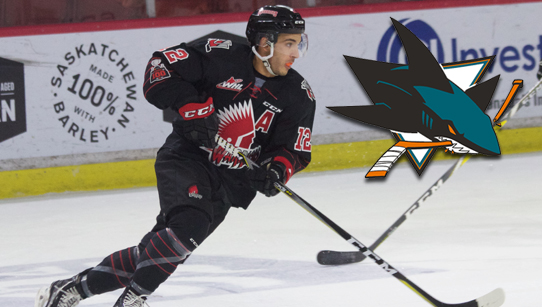 Halbgewachs signs with San Jose – Moose Jaw Warriors