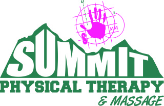 04.16.10 Summit Logos in EPS Transfer [Converted]