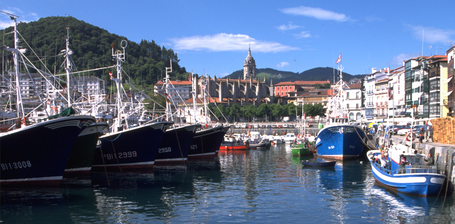 Basque_cropped_900x443_11