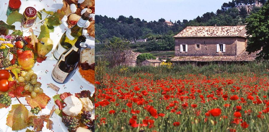 Provence_cropped_900x443_0001_dominique_dia009_b