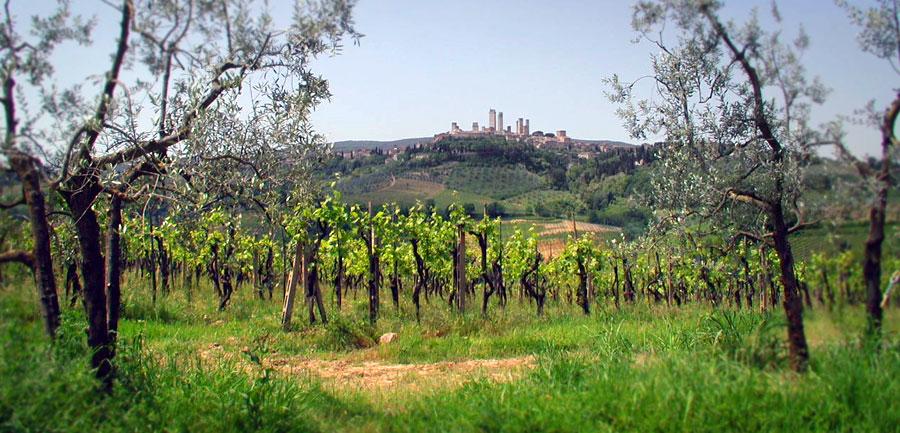 Wj.4022.tuscanyhiking_900x433_1
