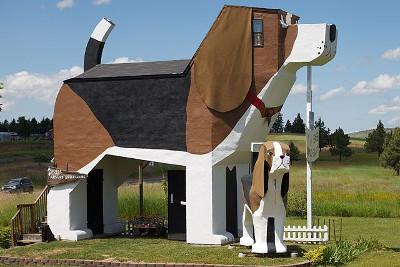 Largest Beagle