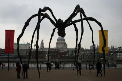 Tate Spider