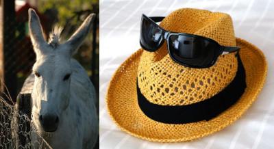 Straw Hat Mule
