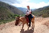 Martin rides to the bottom of Copper Canyon on a donkey.
