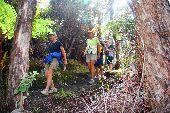 Participants hike along the Kiluea Trail on the Big Island Hawaii.