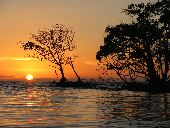 The sun sets behind a mangrove island in the Florida Keys.