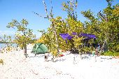 A tent and a purple canopy are set up on a sandy beach in the Florida Keys.