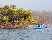 A canoe travels around one of the mangrove islands in Florida's 10,0000 Islands National Wildlife Refuge.
