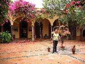 Jane by tropical flowers in the courtyard of a Mexican hotel near Copper Canyon.