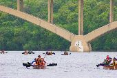 Six voyageur canoes are dispersed across the river as they paddle under one of the many city bridges.