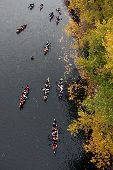 11 voyageur canoes full of participants paddle past green and yellow fall trees in the heart of the Twin Cities.
