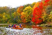 Fall colors pop on the shores of the Mississippi as Wilderness Inquiry trail staff Liz Shirley points out the different varieties.