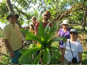 A group holds a large, green bromeliad for the camera in Costa Rica.