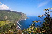 A beautiful vista along the ocean of Waipi'o Valley in Hawaii.