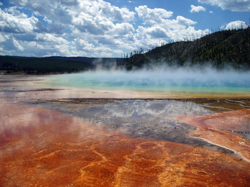 Multicolored microorganisms give Yellowstone its color. This is Grand Prismatic Spring in the Midway Geyser Basin of Yellowstone National Park.