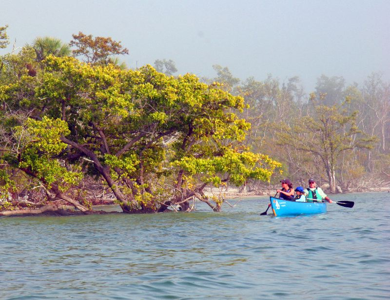 Canoeing is one of the best ways to see this unique ecosystem in the Gulf of Mexico.