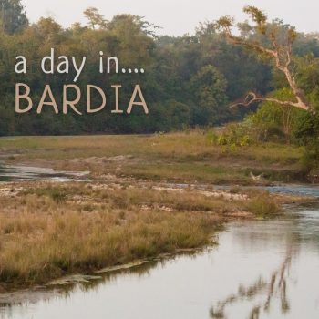Nature Sounds - 'A Day in Bardia' cover