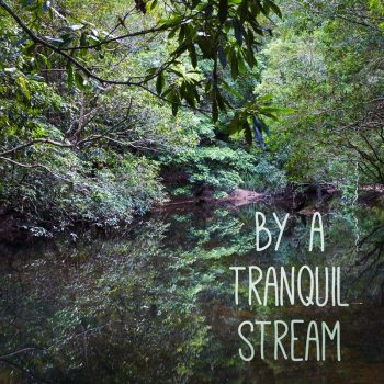 By A Tranquil Stream - Cover Photo