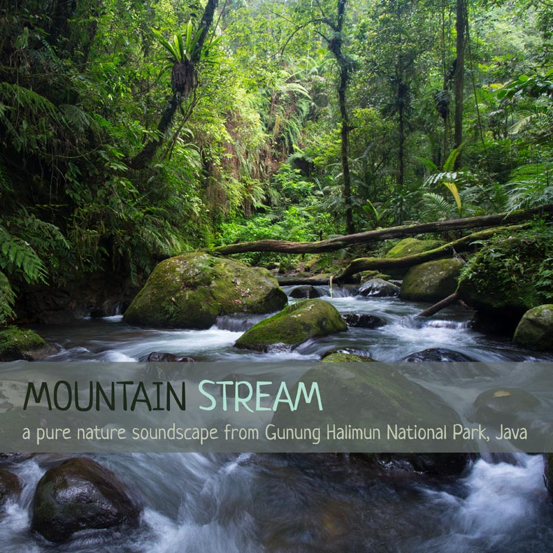 Nature Sounds Album cover - 'Mountain Stream'