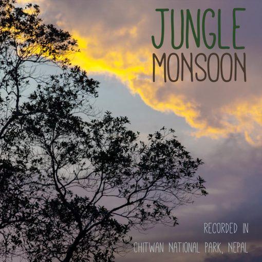 Thunder & Rain Sounds MP3 - 'Jungle Monsoon' cover