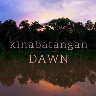 Nature Sounds MP3 - Kinabatangan Dawn